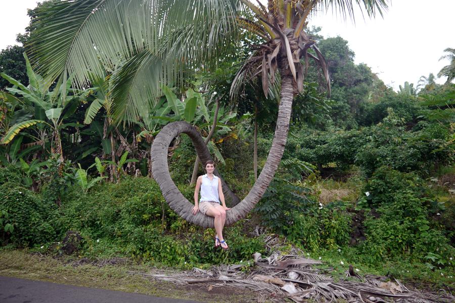 Hawaii_36