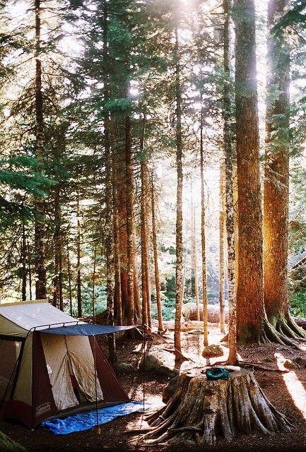 08_camping