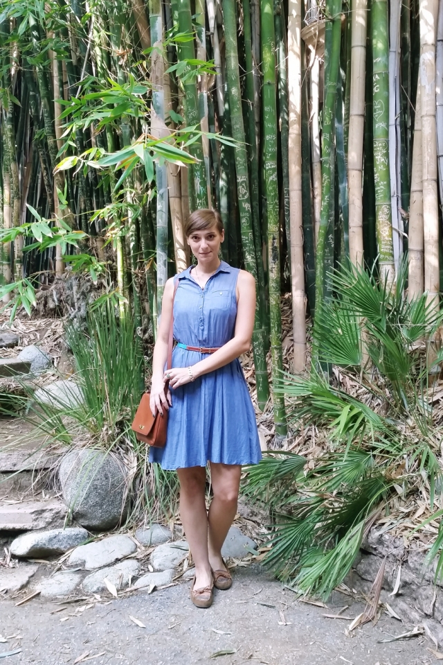 chambray-dress-botanical-gardens-01