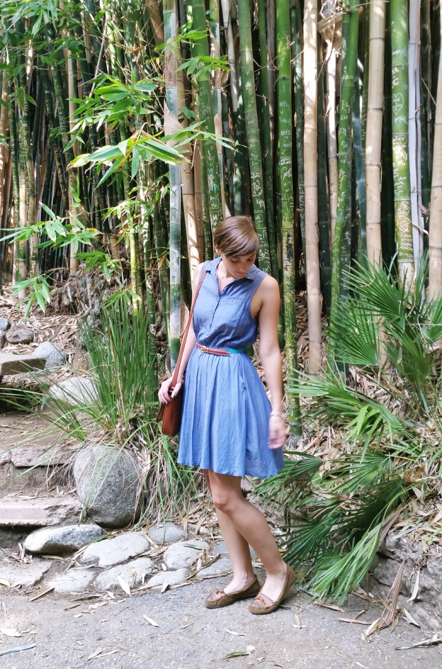 chambray-dress-botanical-gardens-02