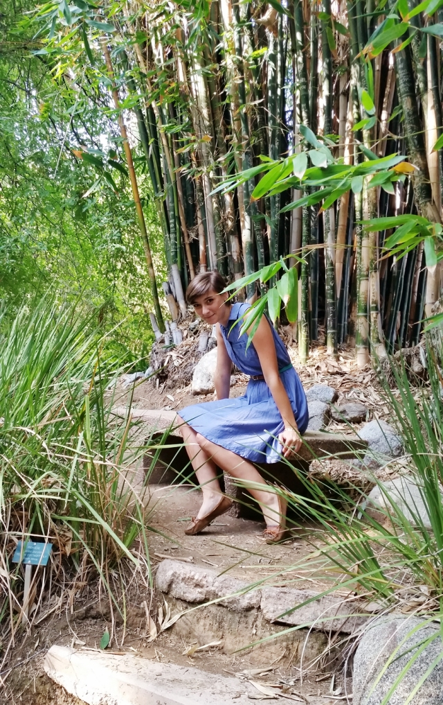 chambray-dress-botanical-gardens-03